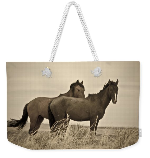 Weekender Tote Bag featuring the photograph Wild Mustangs Of New Mexico 3 by Catherine Sobredo