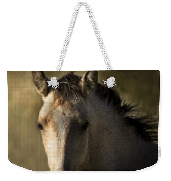 Weekender Tote Bag featuring the photograph Wild Mustangs Of New Mexico 35 by Catherine Sobredo