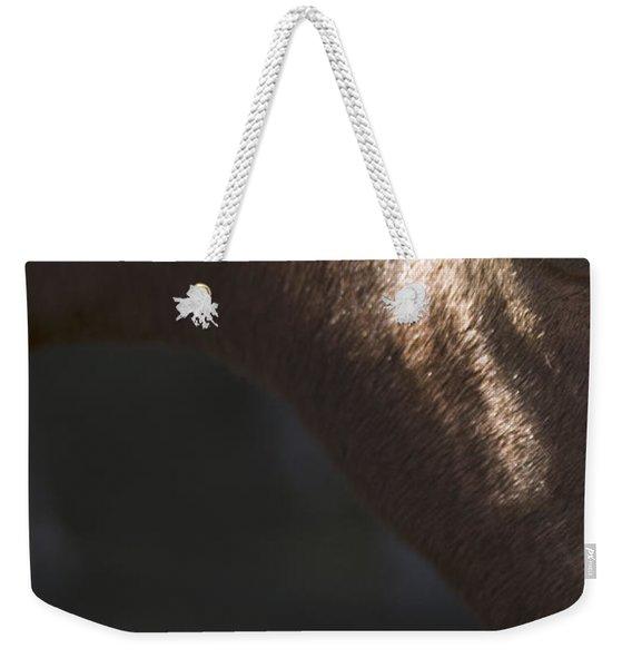 Wild Mustangs Of New Mexico 41  Weekender Tote Bag
