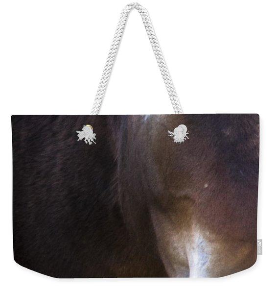 Wild Mustangs Of New Mexico 42 Weekender Tote Bag
