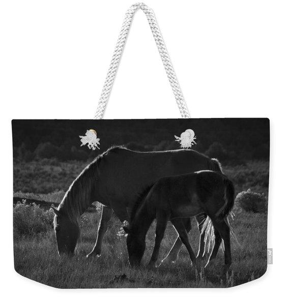 Wild Mustangs Of New Mexico 7 Weekender Tote Bag