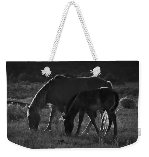 Weekender Tote Bag featuring the photograph Wild Mustangs Of New Mexico 7 by Catherine Sobredo