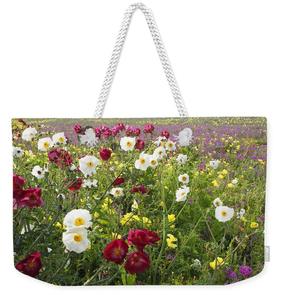 Wild Poppies South Texas Weekender Tote Bag