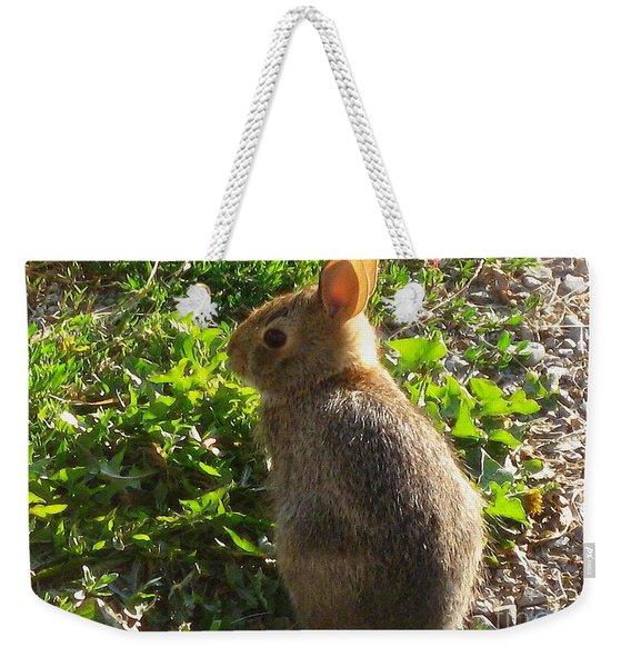Wild Rabbit Weekender Tote Bag