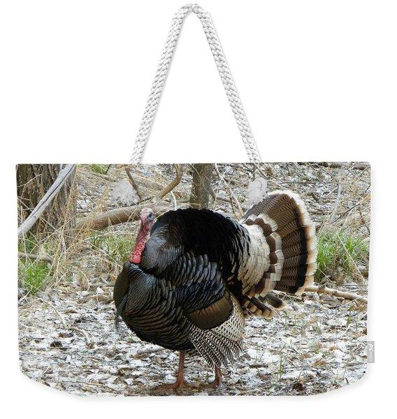 Wild Turkey Mnt Zion Ut Weekender Tote Bag