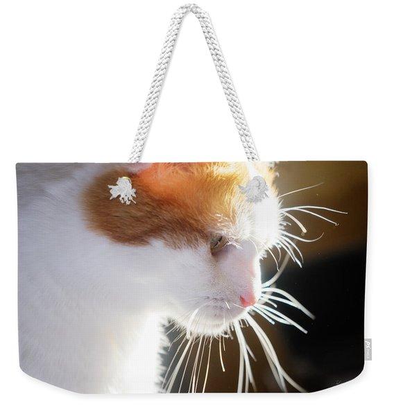 Wild Whiskers Weekender Tote Bag