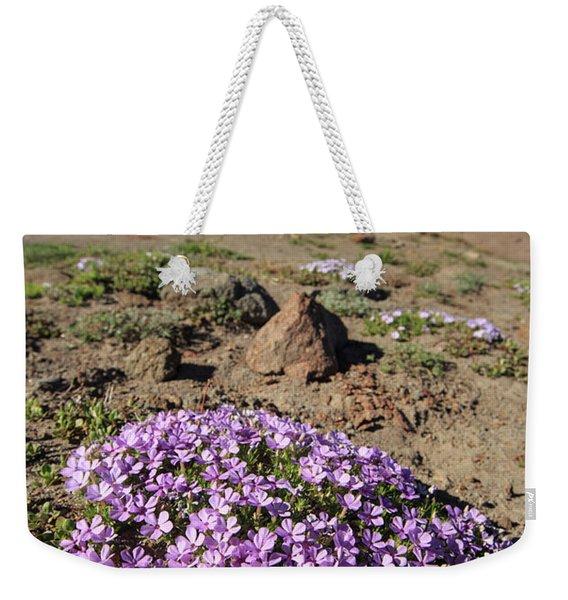 Wildflowers Near Snowcapped Mount Hood Weekender Tote Bag