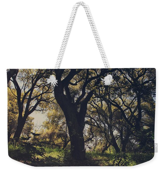 Wildly And Desperately My Arms Reached Out To You Weekender Tote Bag