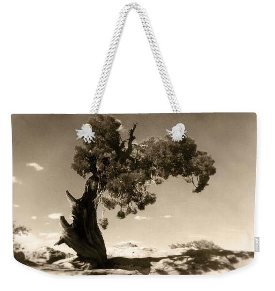Wind Swept Tree Weekender Tote Bag