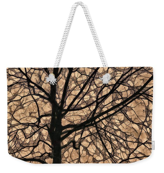 Windowpane Tree In Autumn Weekender Tote Bag