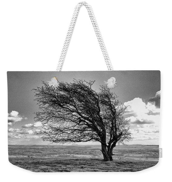 Windswept Tree On Knapp Hill Weekender Tote Bag