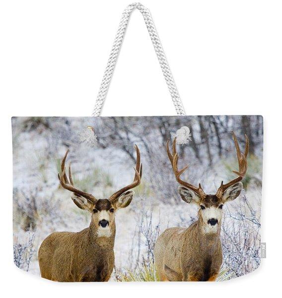 Winter Bucks Weekender Tote Bag