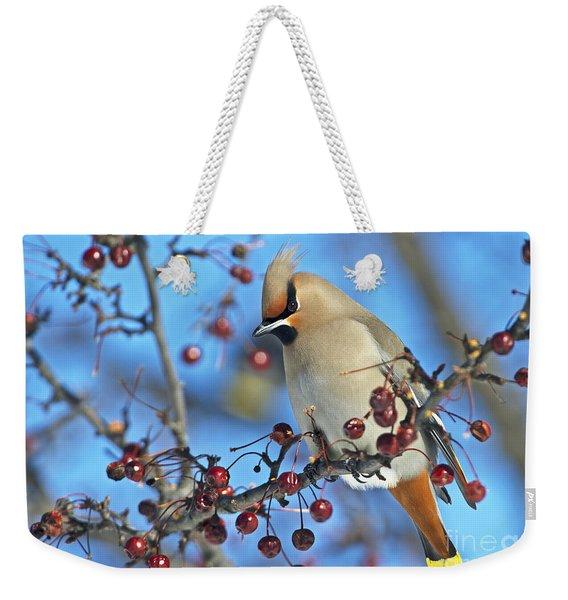 Winter Colors.. Weekender Tote Bag