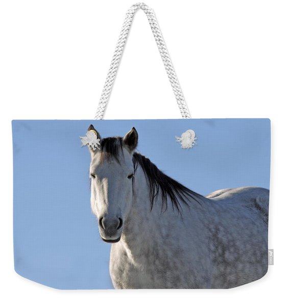 Winter Pony Weekender Tote Bag