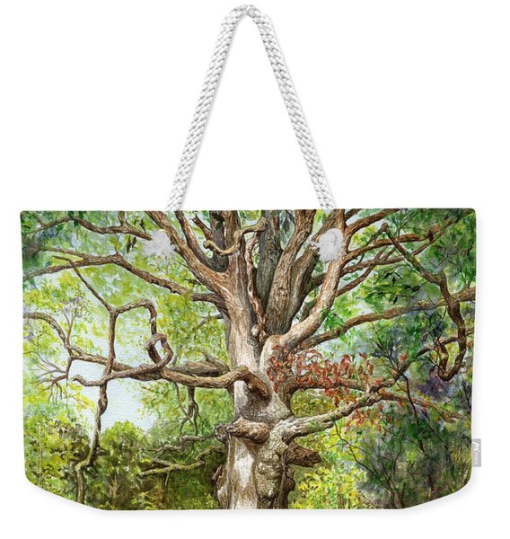 Weekender Tote Bag featuring the painting Wisdom by Nancy Cupp