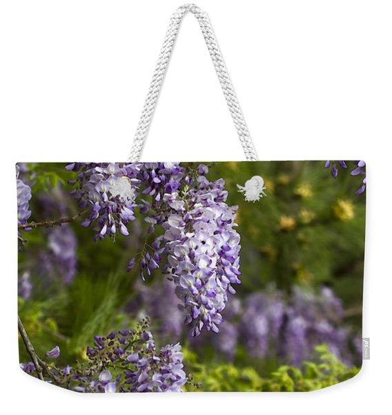 Wisteria Natures Lavender Drapes Weekender Tote Bag