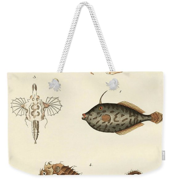 Wonderful Fish Weekender Tote Bag