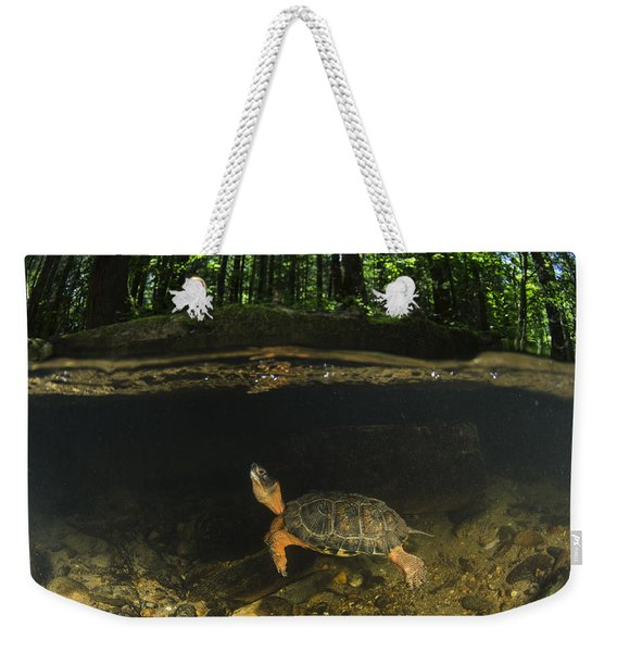 Wood Turtle Swimming North America Weekender Tote Bag