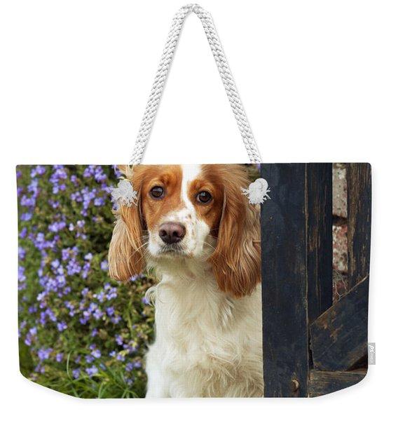 Working Cocker Spaniel Weekender Tote Bag