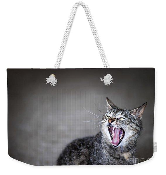 Yawning Cat Weekender Tote Bag