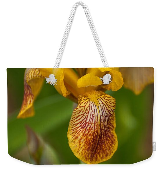 Yellow Bearded Iris Weekender Tote Bag