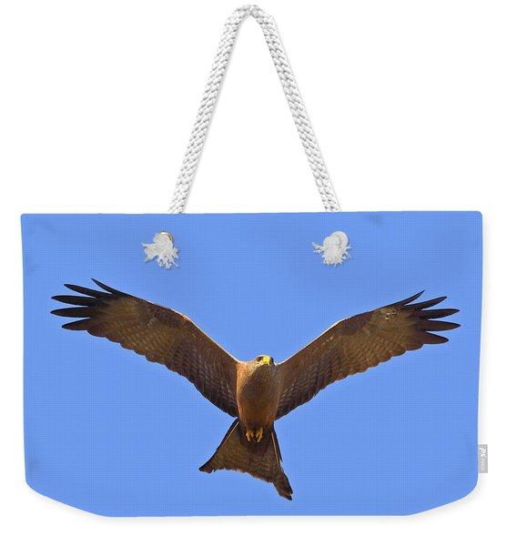 Yellow-billed Kite Weekender Tote Bag