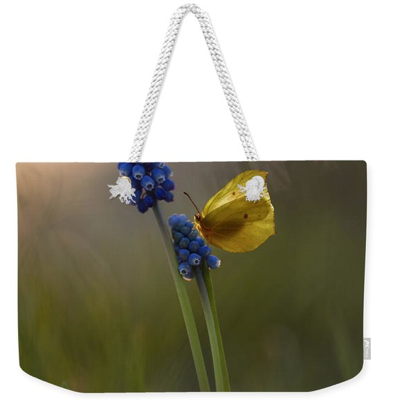 Weekender Tote Bag featuring the photograph Yellow Butterfly On Grape Hyacinths by Jaroslaw Blaminsky