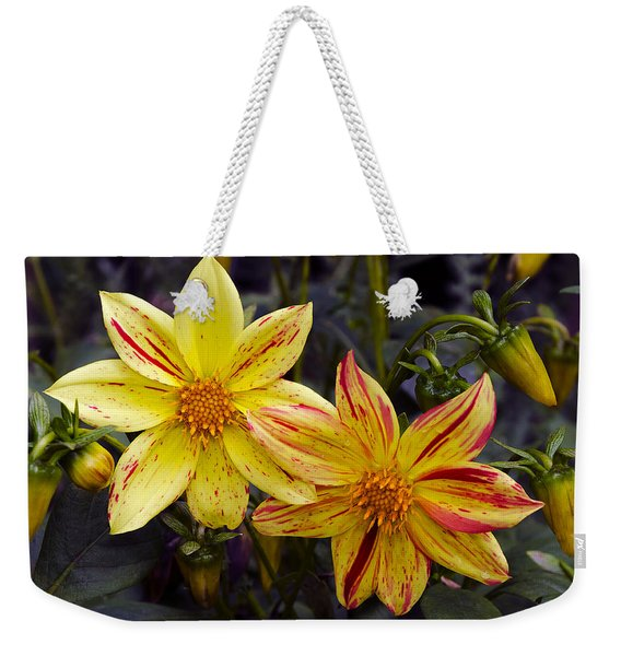 Yellow Dahlia Weekender Tote Bag