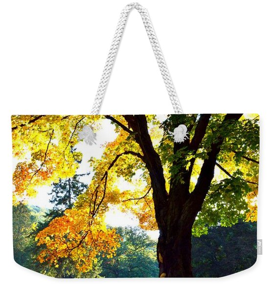 Yellow Highlights Weekender Tote Bag