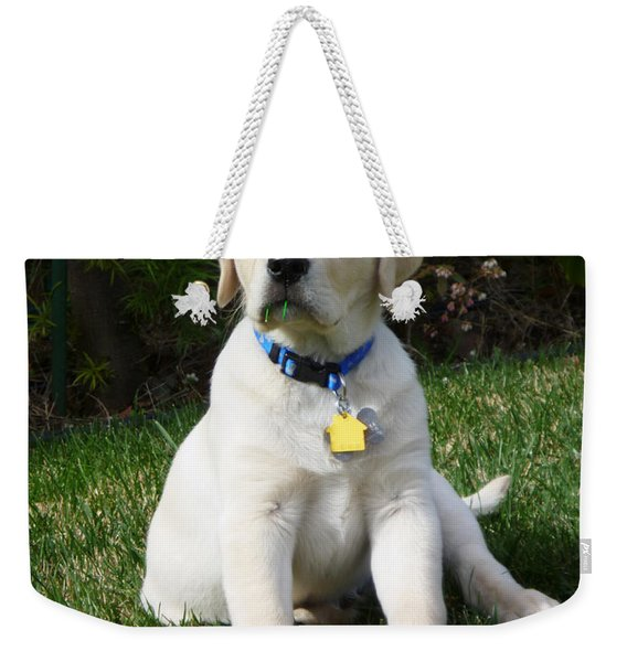 Yellow Lab Puppy Standing Guard  Weekender Tote Bag