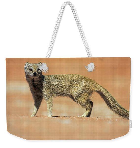 Yellow Mongoose In Kalahari Desert Weekender Tote Bag