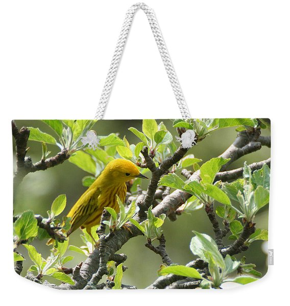 Weekender Tote Bag featuring the photograph Yellow Warbler In Pear Tree by William Selander