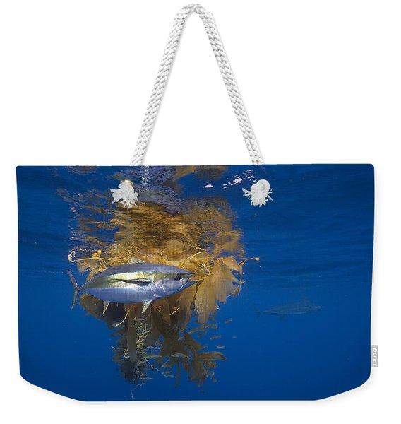 Yellowfin Tuna And Kelp Nine-mile Bank Weekender Tote Bag