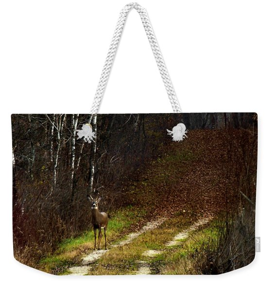Young Buck And Autumn Weekender Tote Bag