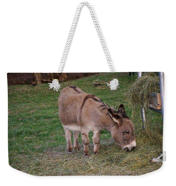 Young Donkey Eating Weekender Tote Bag