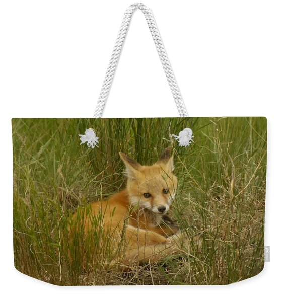 Young Fox Under The Fence Weekender Tote Bag