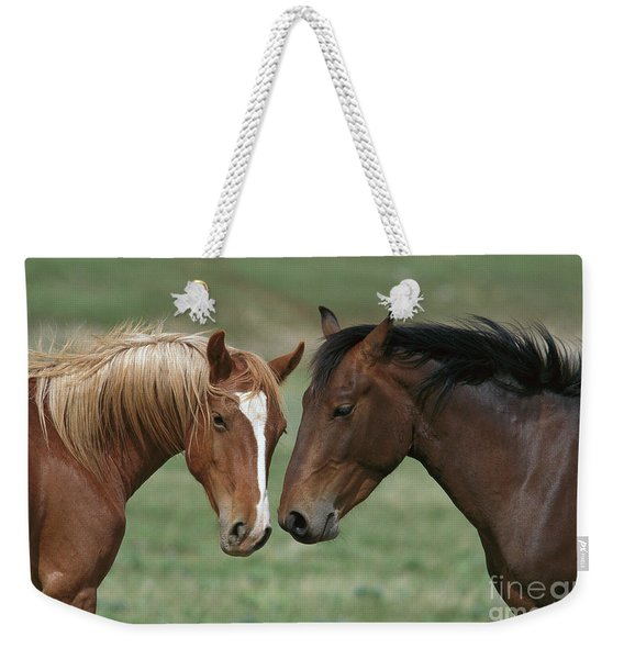 Young Mustang Bachelor Stallions Weekender Tote Bag