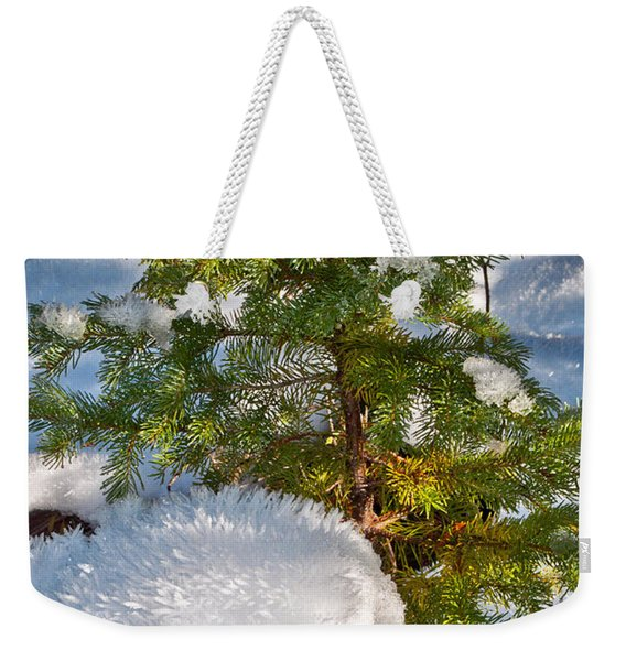 Young Winter Pine Weekender Tote Bag