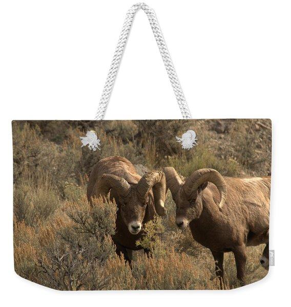 You Are In My Way Weekender Tote Bag