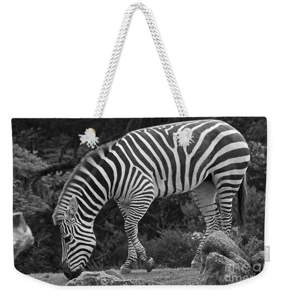 Zebra In Black And White Weekender Tote Bag
