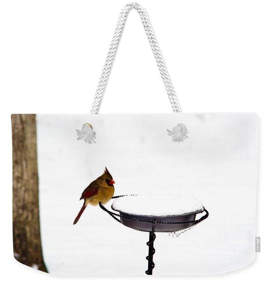 Cardinal At Feeding Station Weekender Tote Bag