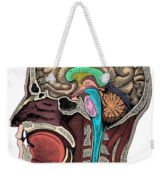 Head And Brain Anatomy Weekender Tote Bag