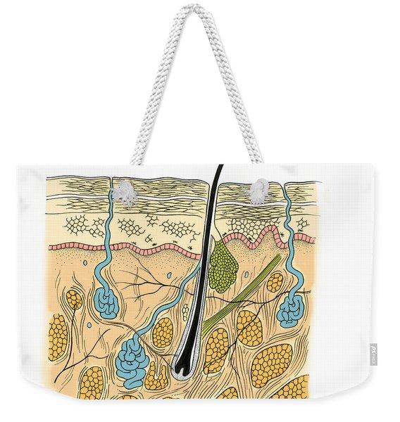Illustration Of Skin Section Weekender Tote Bag