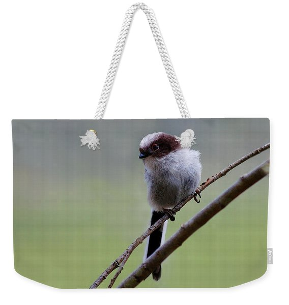 Long Tailed Tit Weekender Tote Bag