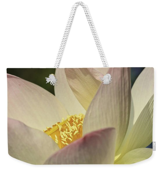 Nelumbo 'pink And Yellow' Weekender Tote Bag