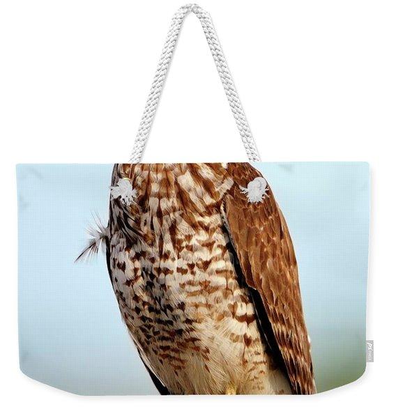 Portrait Of A Red Shouldered Hawk Weekender Tote Bag