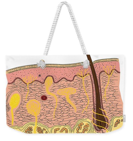 Skin Anatomy Weekender Tote Bag