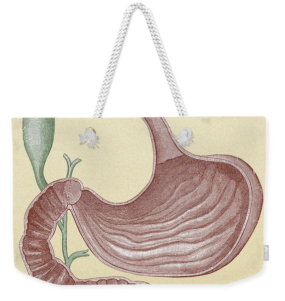Stomach And Bile Duct Weekender Tote Bag