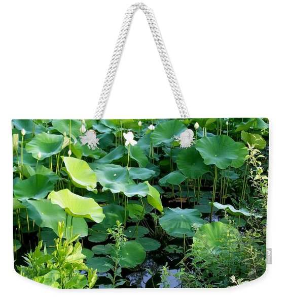 Weekender Tote Bag featuring the photograph The Pond by Cynthia Amaral