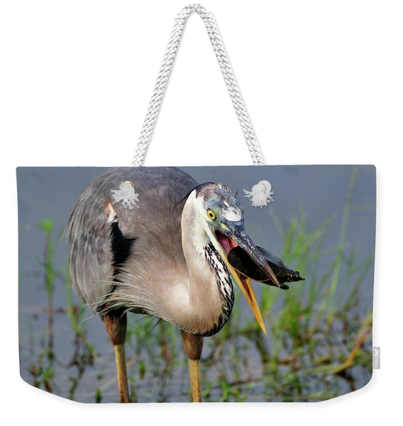 Toss And Catch Weekender Tote Bag